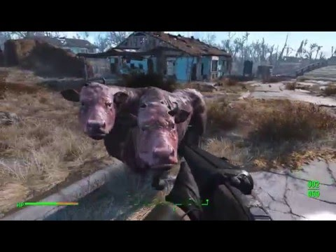 Fallout 4, Where to buy the brahmin
