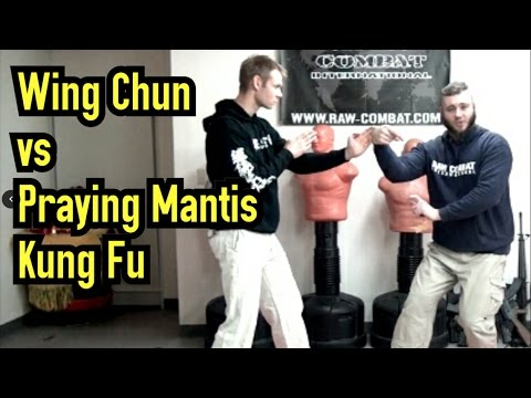 Wing Chun VS Praying Mantis Kung Fu - Breakdown & Comparison of Techniques