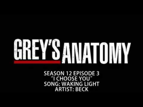 Grey's Anatomy S12E03 - Waking Light by Beck