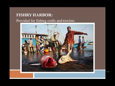 Ports and Harbour Engineering by Prof Dr. Asim Farooq,