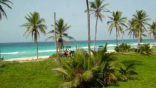 Moon Rocker Adventures at Hard Rock Hotel & Casino Punta Cana / Moon Palace Resort