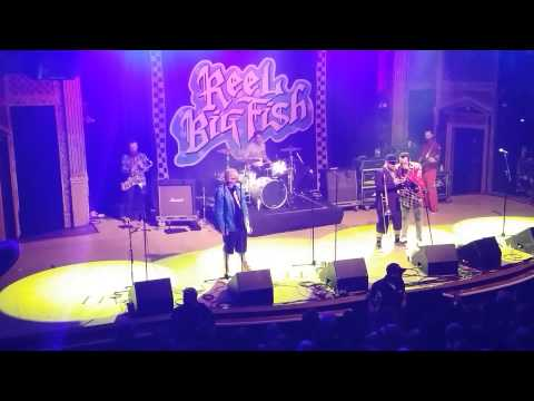 Jan 15, 2015, Reel Big Fish Google The Lyrics Where Have You Been