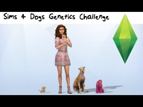 Sims 4 - Dogs Genetics Challenge