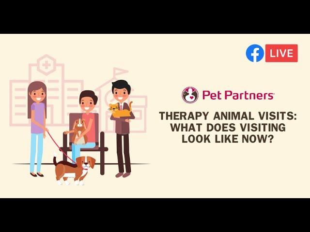 Facebook Live with Pet Partners of Las Vegas