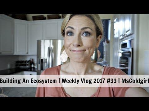 Building An Ecosystem | Weekly Vlog 2017 #33 | MsGoldgirl