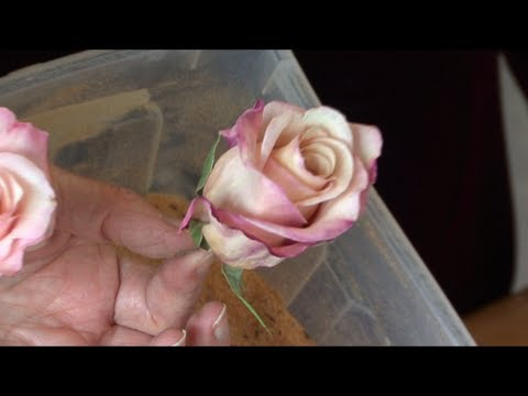 How To Preserve A Bouquet Of Flowers Youtube