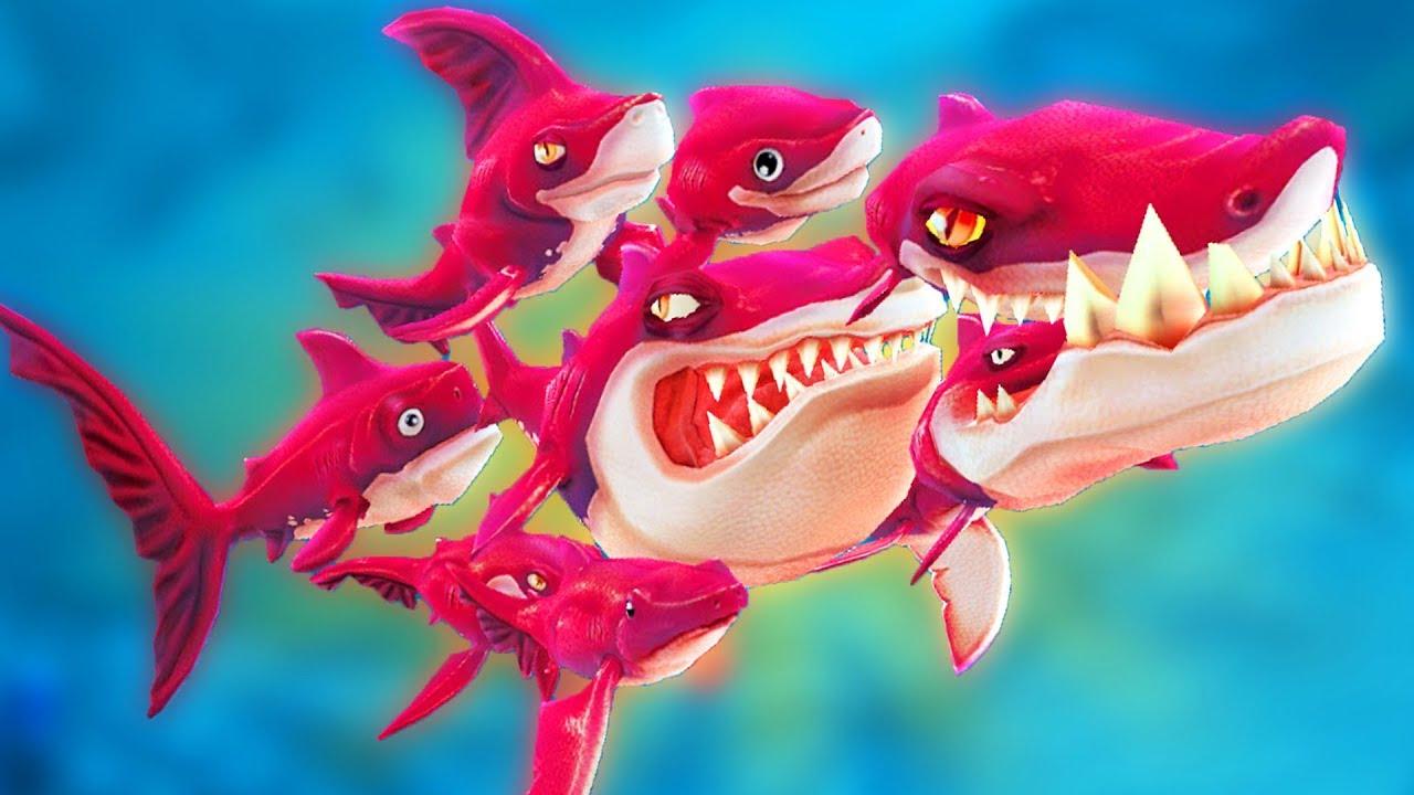 НОВАЯ АКУЛА СТАЯ, ОБНОВЛЕНИЕ | Hungry Shark World