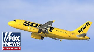 No reason for people to accost flight attendants, customers: Former Spirit Airlines CEO