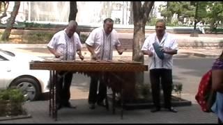 Marimba para fiestas 4745 2487 DF