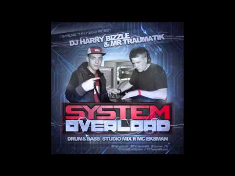 SYSTEM OVERLOAD - DJ HARRY BIZZLE & MR TRAUMATIK ft MC EKSMAN