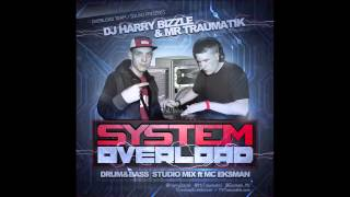 SYSTEM OVERLOAD - DJ HARRY BIZZLE & MR TRAUMATIK ft MC EKSMAN