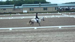 Zippos Charmed One Training 2 Test at Dressage for Kids 2010