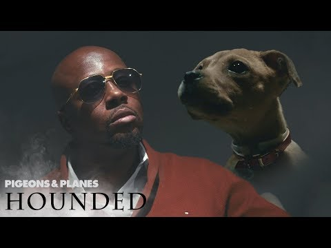 Wyclef Jean Gets Interviewed by Puppies | Hounded