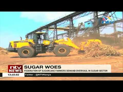 Federation of sugarcane farmers demand an overhaul in the sector