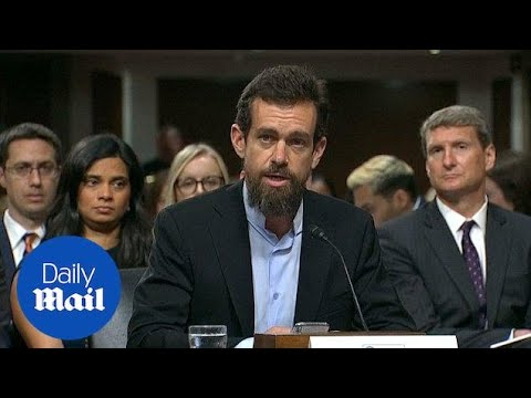 US Congress grills Facebook, Twitter over foreign bids to tilt politics