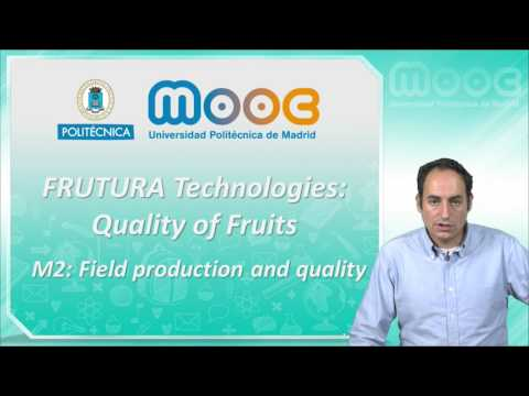 MOOC Frutura Technologies 2: Field production and quality