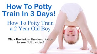 How To Potty Train In 3 Days - How To Potty Train A 2 Year Old Boy