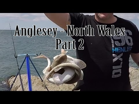 Anglesey - North Wales Part 2