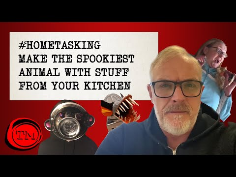 Make The Spookiest Animal With Stuff From Your Kitchen   #Hometasking