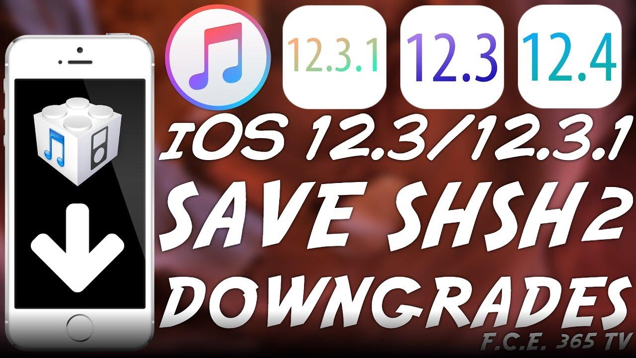 iOS 12 4 / iOS 12 3 1 / iOS 12 3 - How To Save SHSH2 Blobs For DOWNGRADES /  JAILBREAK