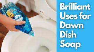 Brilliant Uses for Dawn Dish Soap