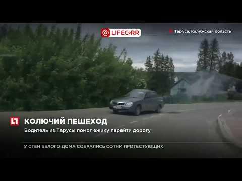 Новости ::: Администрация муниципального района Тарусский