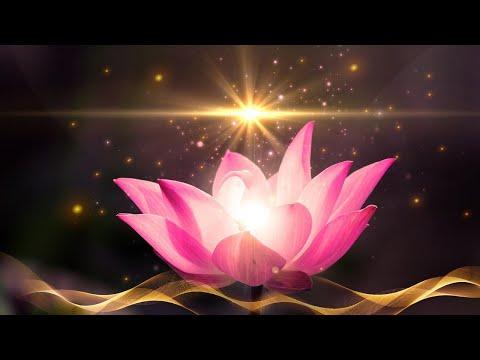 Ocean meditation: Relaxing Ocean Waves & Tibetan Singing Bowls ☯ Zen, Yoga, Spa & Therapy Music, 2 h