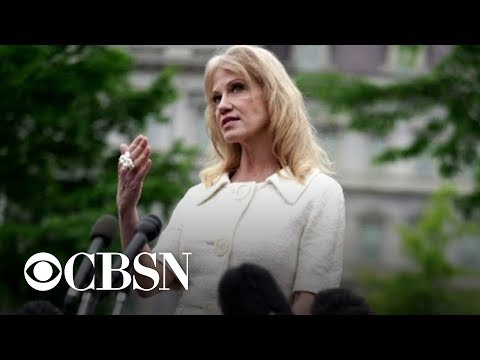 Federal office says Kellyanne Conway should be removed for violating Hatch Act
