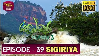 Sobadhara - Sri Lanka Wildlife Documentary | 2019-12-20 | Sigiriya ( සීගිරිය ) Thumbnail