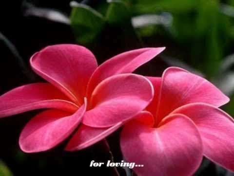 THANK YOU, LOVE - Jose Mari Chan