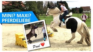 MINI MAXI Pferdeliebe 💕🐴 FMA mit Kenny & Paul