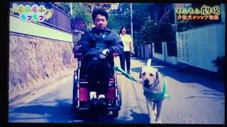 2018.7.27 N〇K「もふもふモフモフ」介助犬の存在が珍しかった日本で...