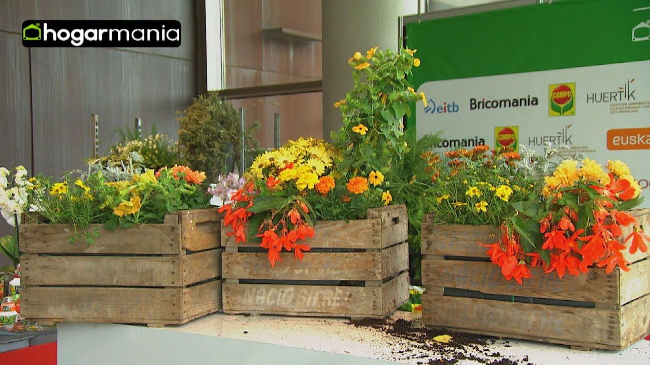 Crear composiciones florales con cajas de fruta youtube for Mesa con cajas de fruta