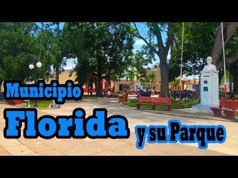 Video de Florida 3