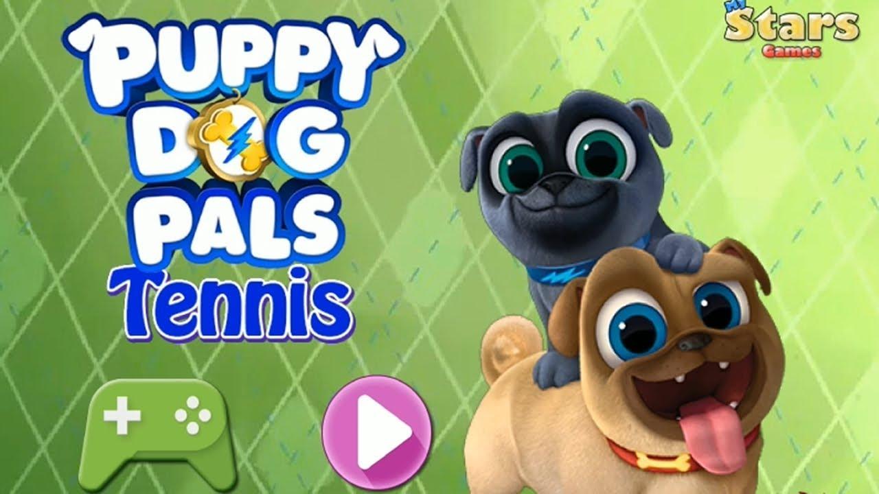 Bingo Y Roly Para Colorear Dibujos para colorear Puppy