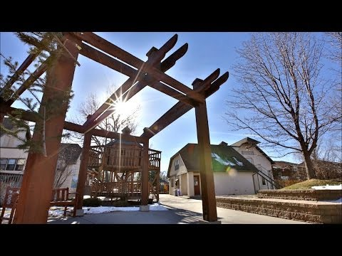 Mountain Phoenix Community School | A Waldorf Inspired Education