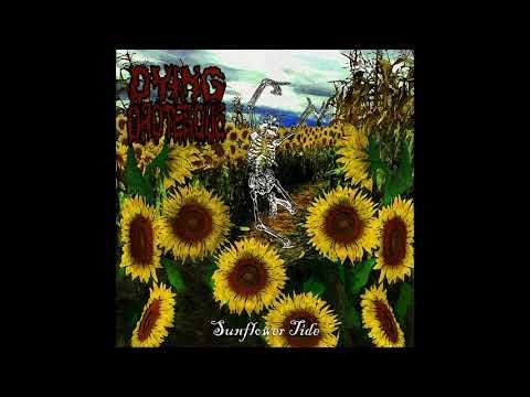 Dying Grotesque - Sunflower Tide (2020) (New Full Album)