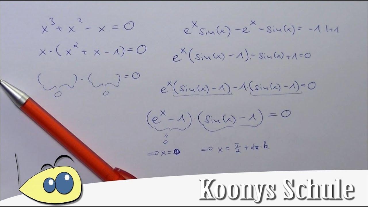 Gleichung mit e^x und sin(x) durch Ausklammern lösen | schwere ...