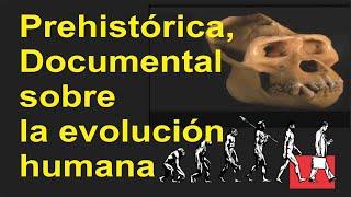 Prehistórica, Documental sobre la evolución humana