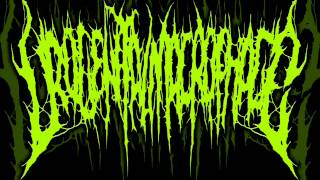 Urogenital Macrophage - An Anal Hemorrhage of a Virgin Prostitute (Debut Album 2012)