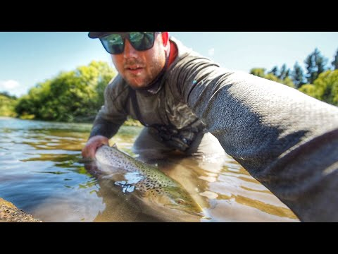 The Trick To Catching Big NZ Brown Trout?