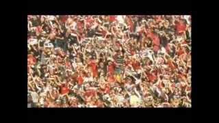 South Carolina Gamecocks Football 2011 Hype
