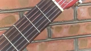 Жуки- Батарейка(обучение на гитаре)