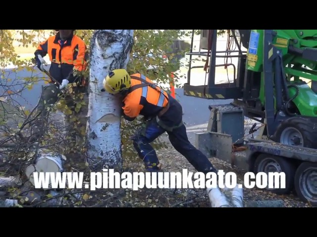 Leguan Lifts in action: L160 4WD Puunkaato Raumalla (2015)