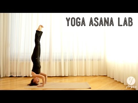 Yoga Asana Lab: Inversions (Headstand, Plow and Shoulder stand)