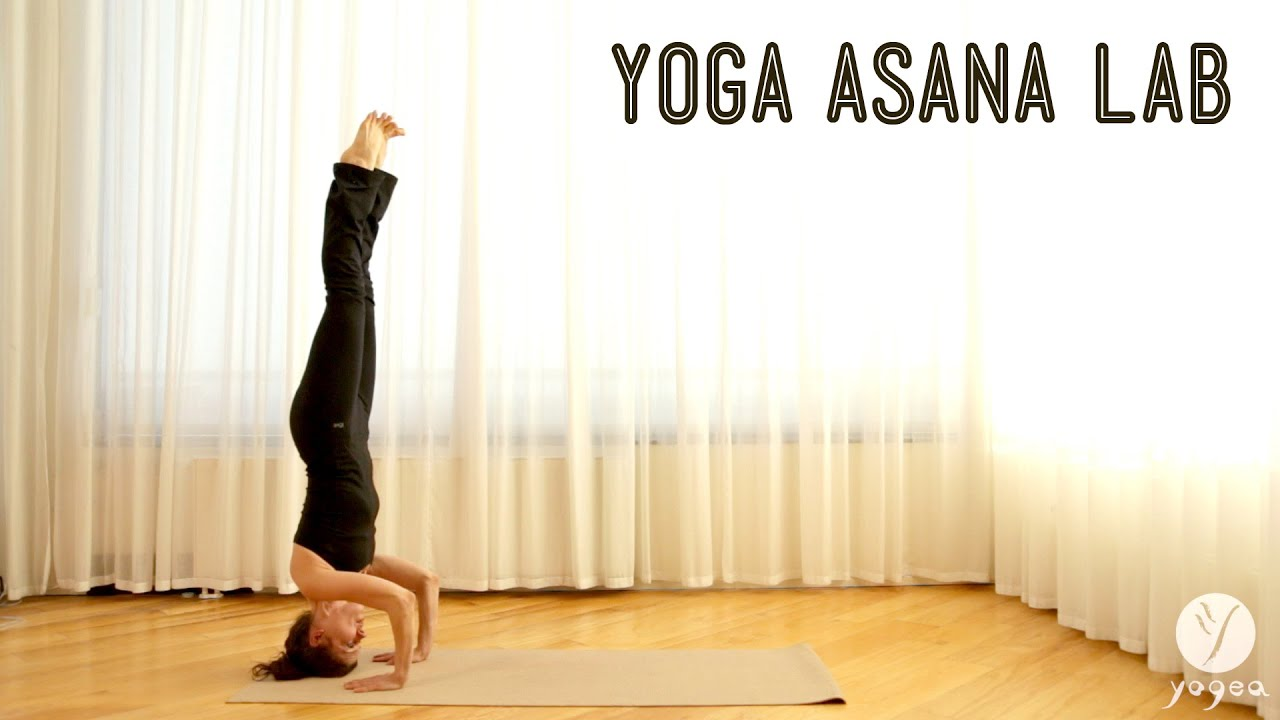 Yoga Asana Lab: Inversions (Headstand, Plow and Shoulder ...