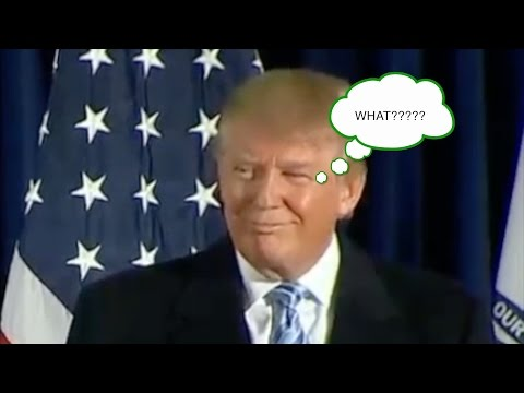 Sarah Palin says.. what?