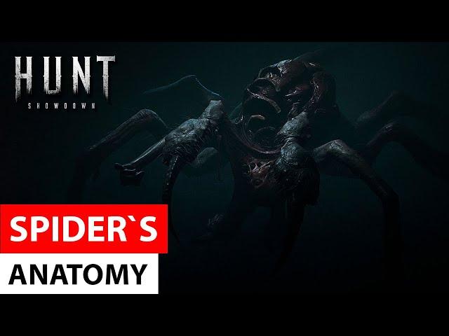 Hunt: Showdown - Spider`s Anatomy / Анатомия босса Паука