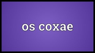 Os coxae Meaning