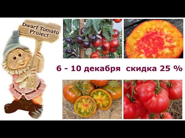 Акция «5 счастливых дней»: скидка 25% на томаты серии «Томатный гном»